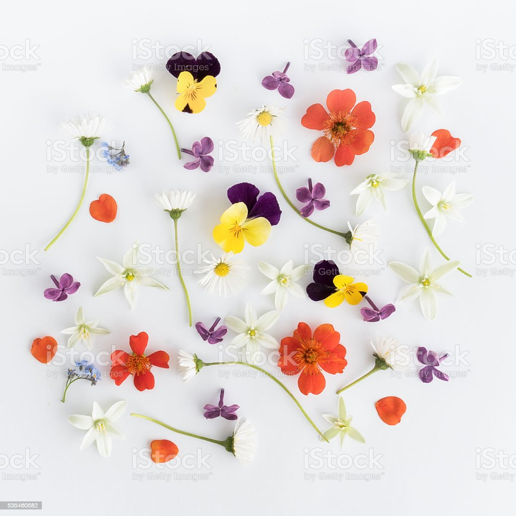 Colourful bright pattern made of flowers. Flat lay, top view stock photo
