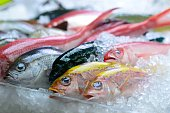 istock Colourful catch 493597702