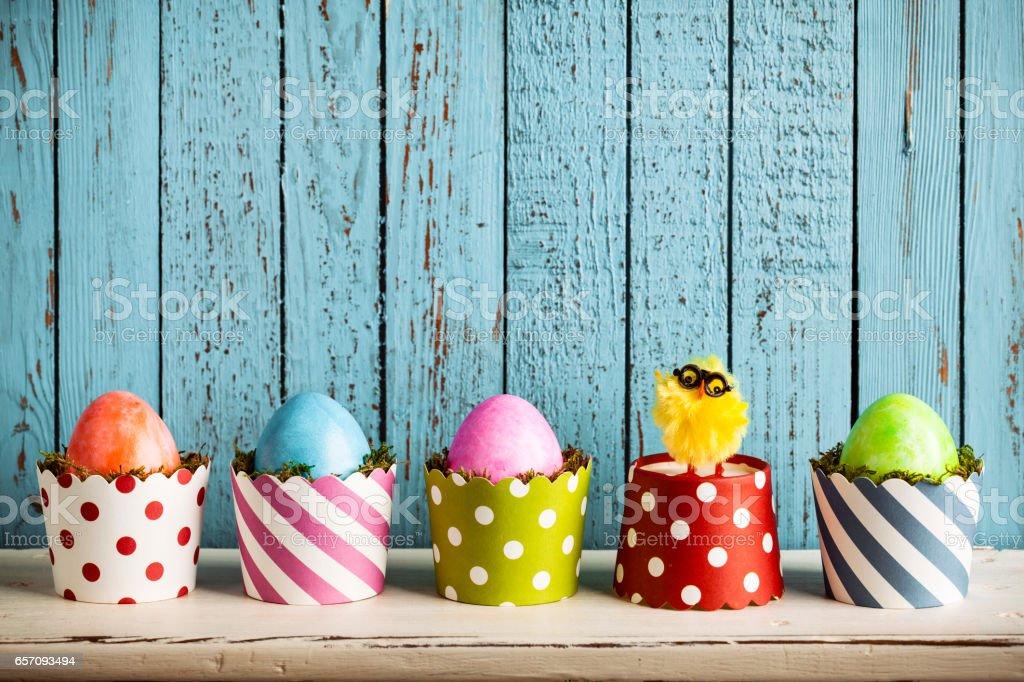 Colourful Easter Eggs in Cake Pans and baby chicken stock photo