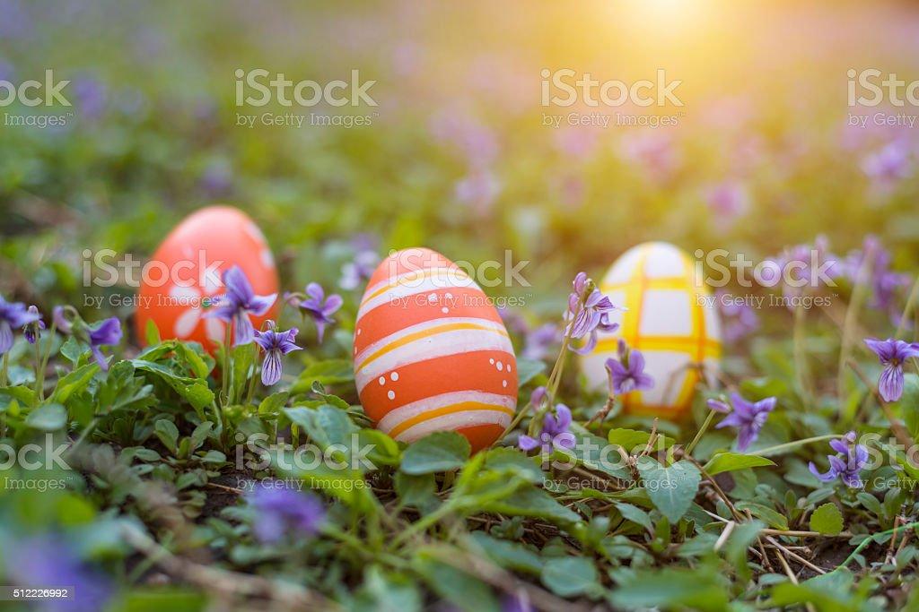 Bunte Ostern Eier auf Gras – Foto
