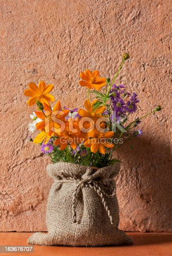 istock Colourful flowers in front of a terracotta wall. 163676707