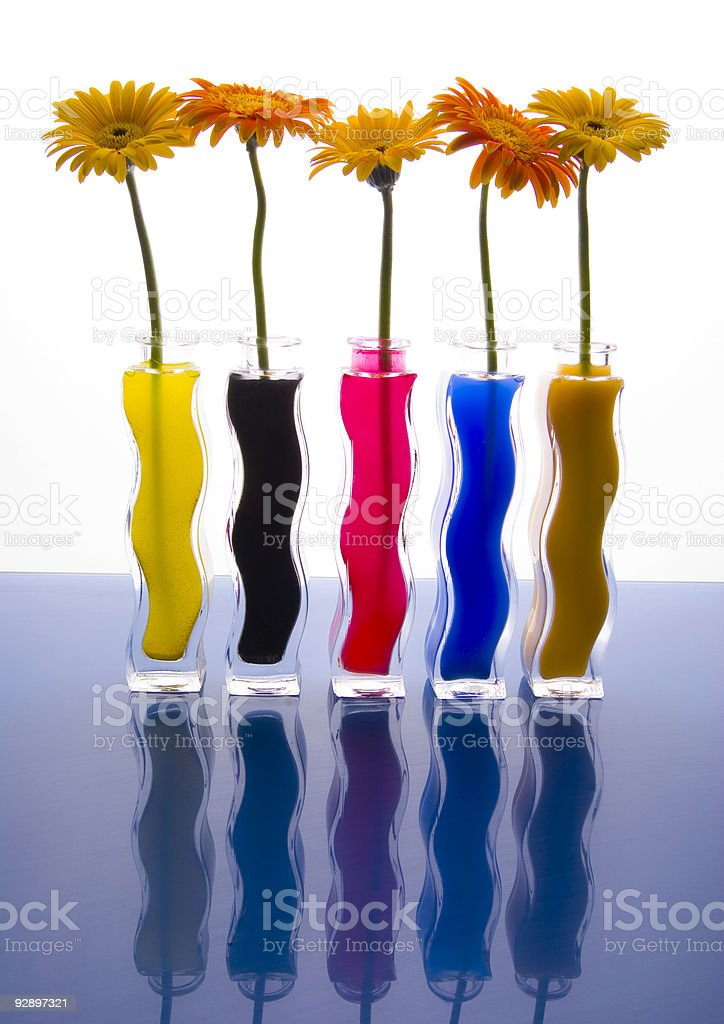 Colourful gerbers royalty-free stock photo