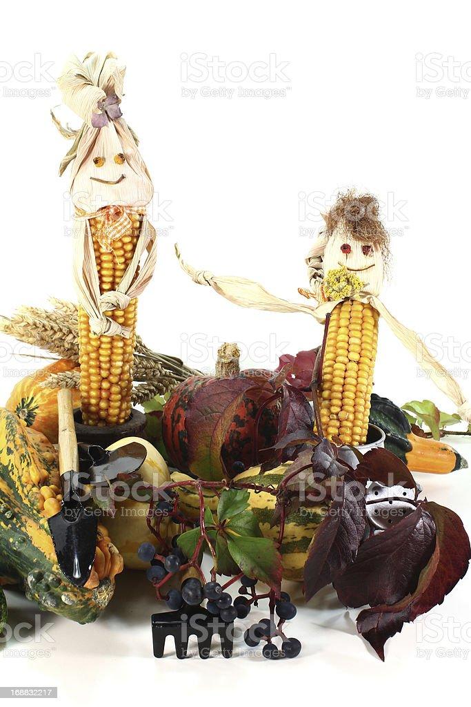 Coloridas harvest festival - foto de acervo