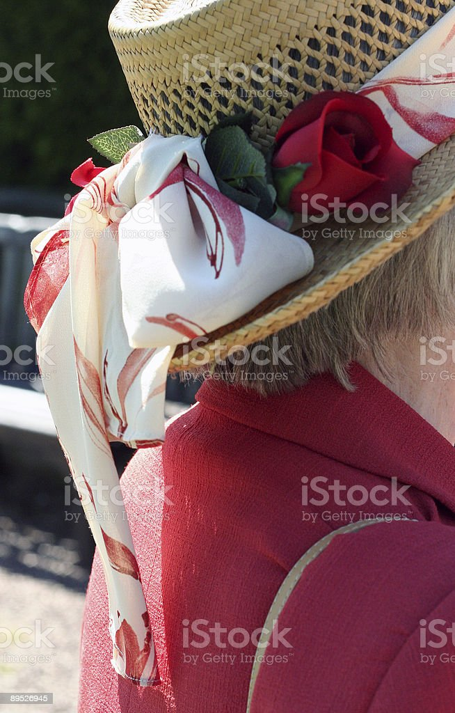 Colourful Hat royalty-free stock photo