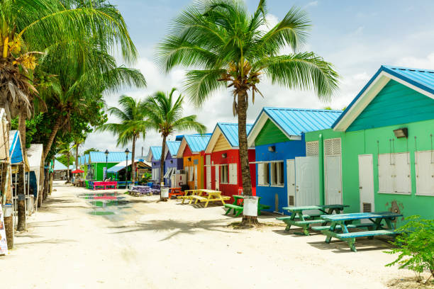 colourful houses on the tropical island of barbados - caribbean stock pictures, royalty-free photos & images