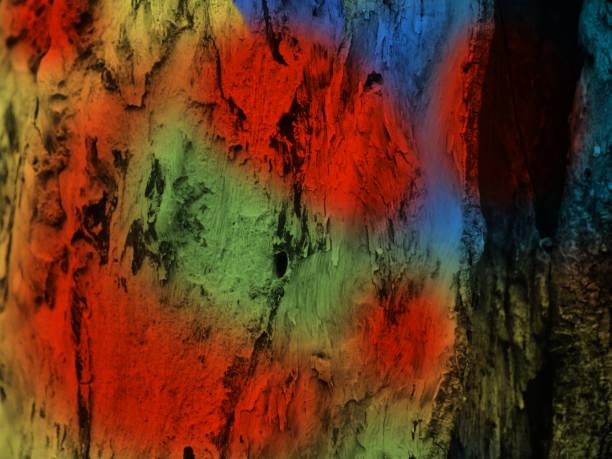 Colourful paints on a tree parts unique photo stock photo