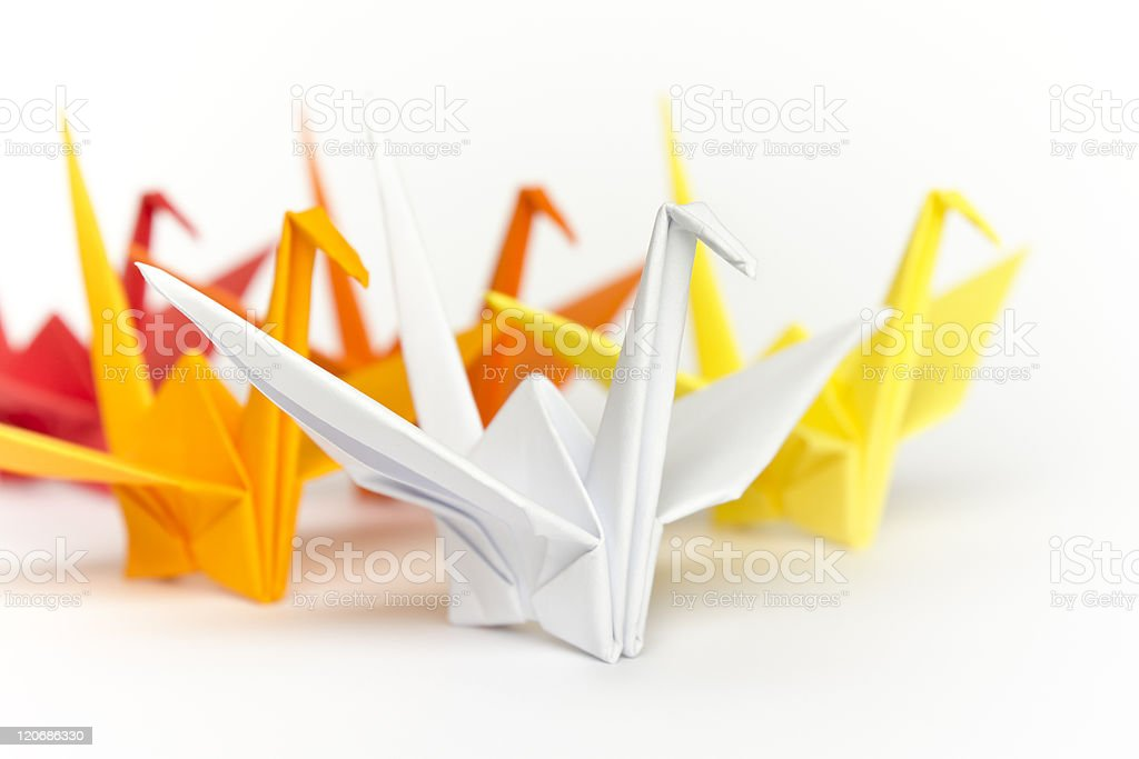 Colourful paper birds stock photo