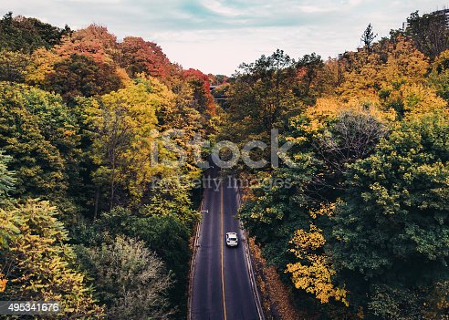 istock Colourful Roads in Canada in the Fall 495341676