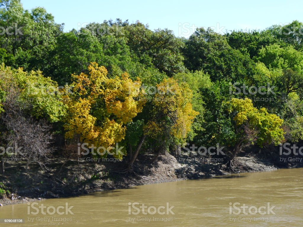 Colourful Trees on a River Bank stock photo