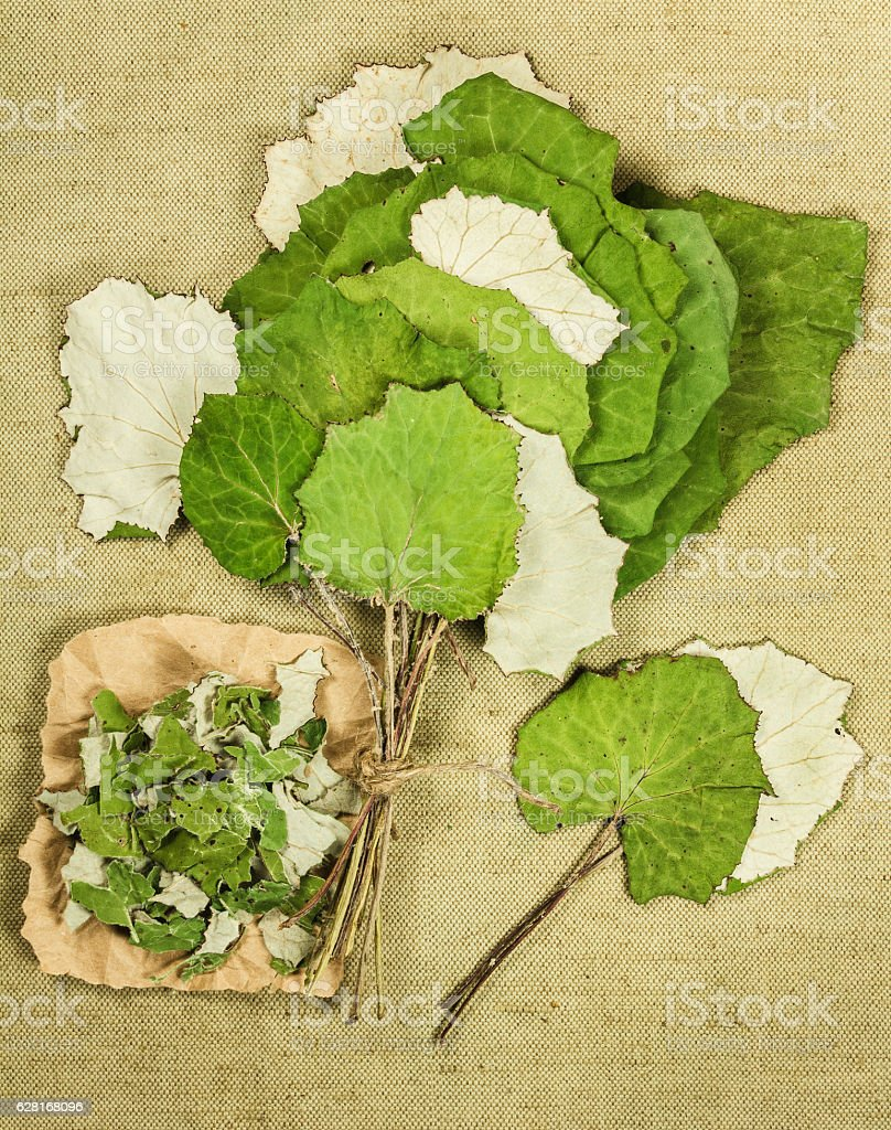 Foto de Coltsfoot Foalfoot Dried Herbs Herbal Medicine