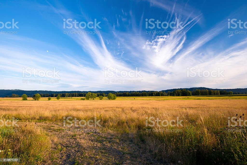Columbia Gorge beautiful summer landscape with yellowed grass in meadow stock photo