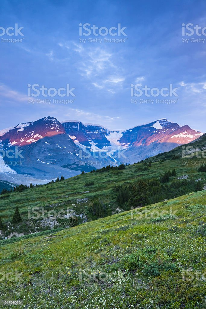 Columbia Icefields In The Morning stock photo