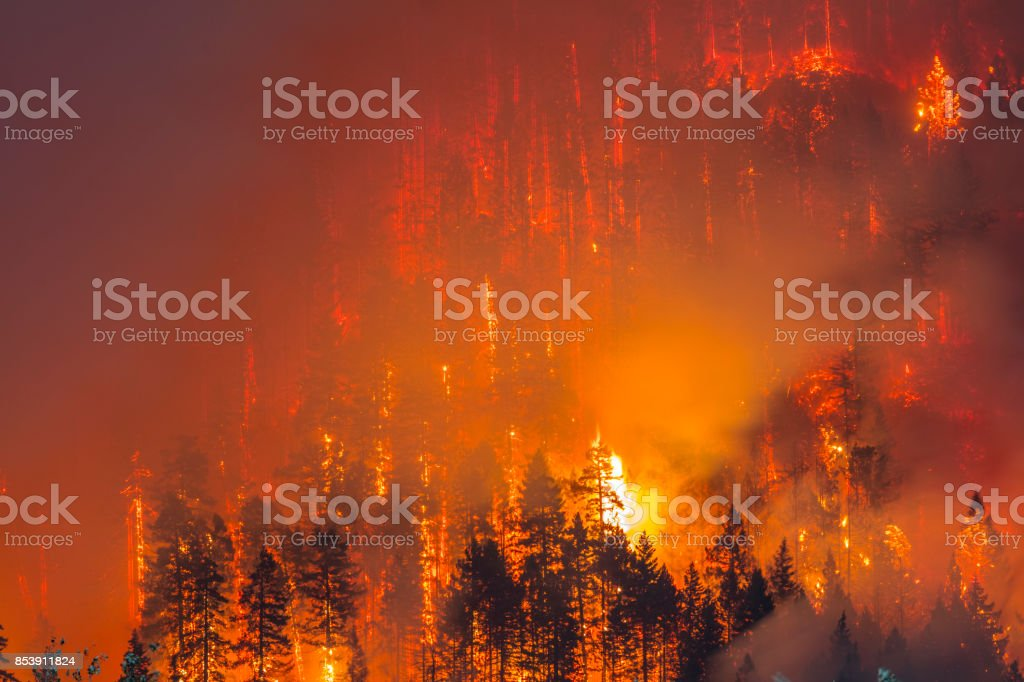Columbia River Gorge Fire stock photo
