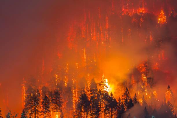 Columbia River Gorge Feuer – Foto