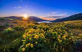 Springtime, River, Sunset, Meadow, Oregon - US State