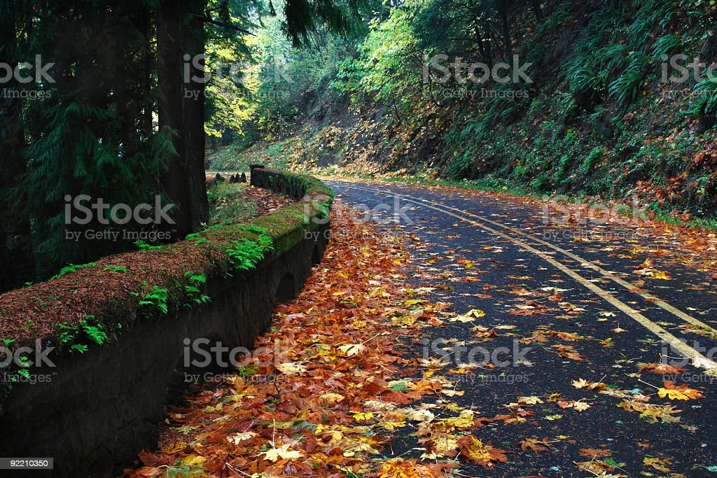 Columbia River Scenic Highway in Fall stock photo