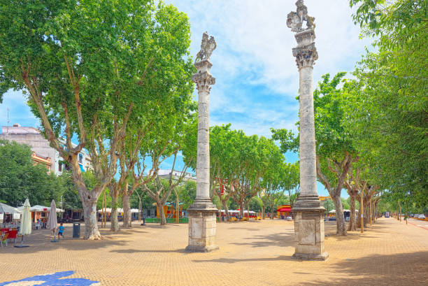 Column Alameda de Hercules in downtown of the city Seville - is the largest city of the autonomous community of Andalusia, Spain. stock photo