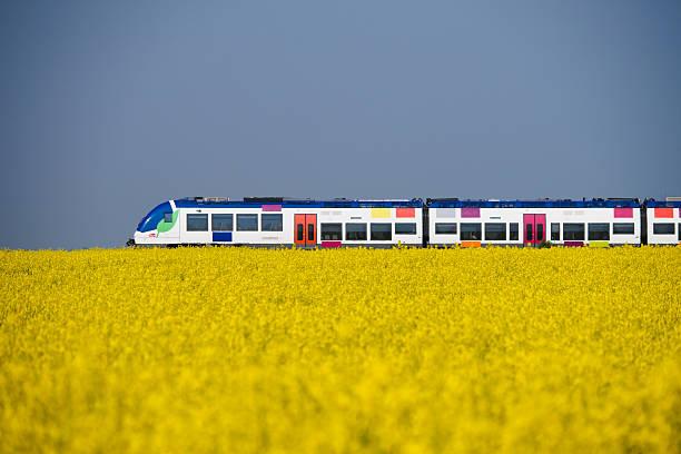 Colza train stock photo