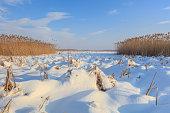lake in winter. Location