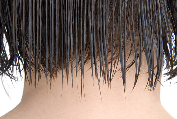 Combed woman's hair  wet hair stock pictures, royalty-free photos & images