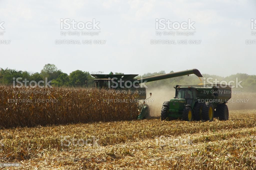 Combine and hopper cut down rows of corn stalks in Illinois during fall harvest stock photo