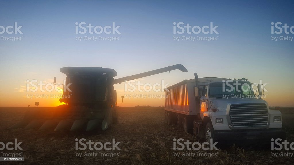 Combine and Semi-Truck at Sunset During Harvest in Iowa stock photo