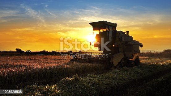 istock Combine, field and sunrise. Reach success in agribusiness 1023528536