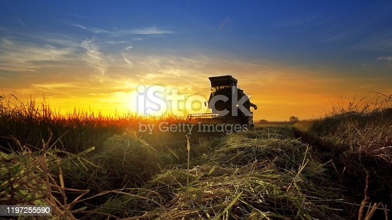 istock Combine, field and sunrise. Reach success in agribusiness 1197255590