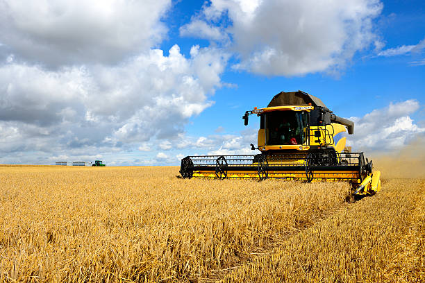 Combine Harvester and Tractor in Barley Field during Harvest Combine Harvester in Barley Field during Harvest agricultural machinery stock pictures, royalty-free photos & images