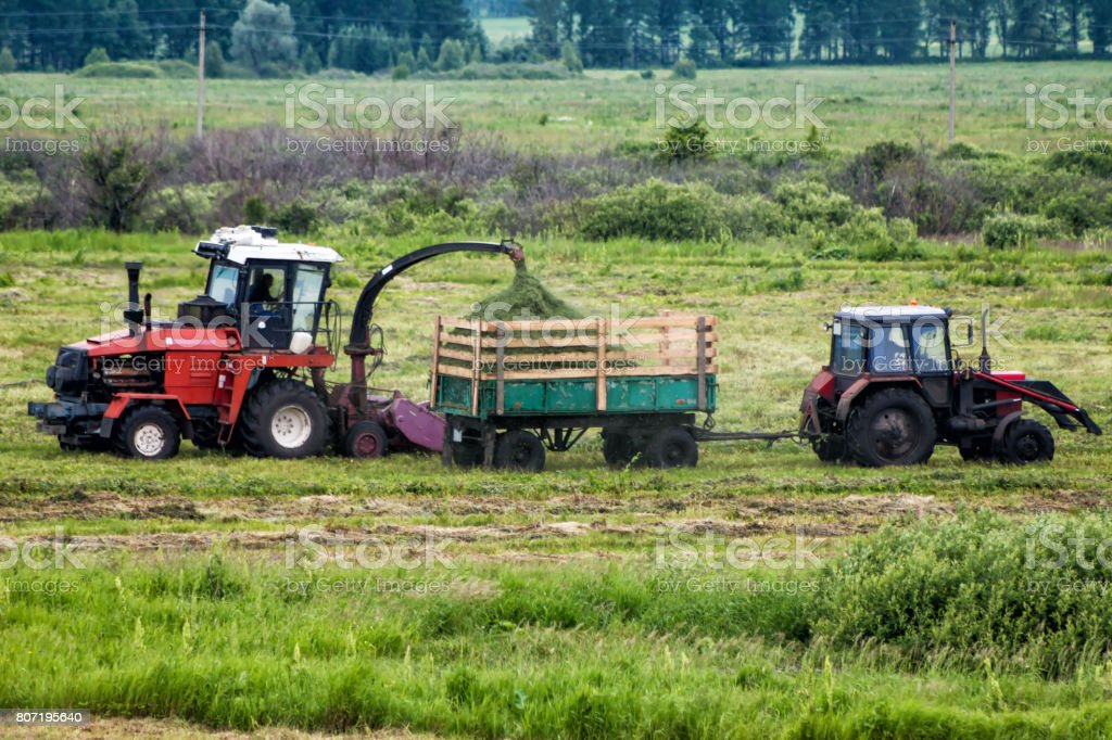 Combine harvester and tractor remove grass from the field stock photo
