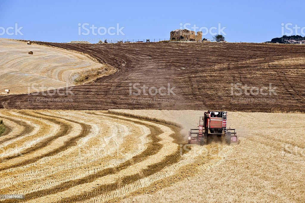 Combine Harvester. Color Image royalty-free stock photo