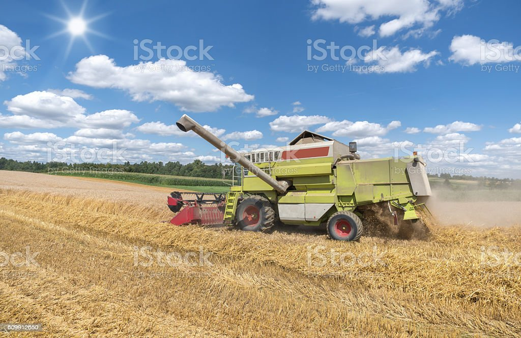 Combine harvester during harvest stock photo