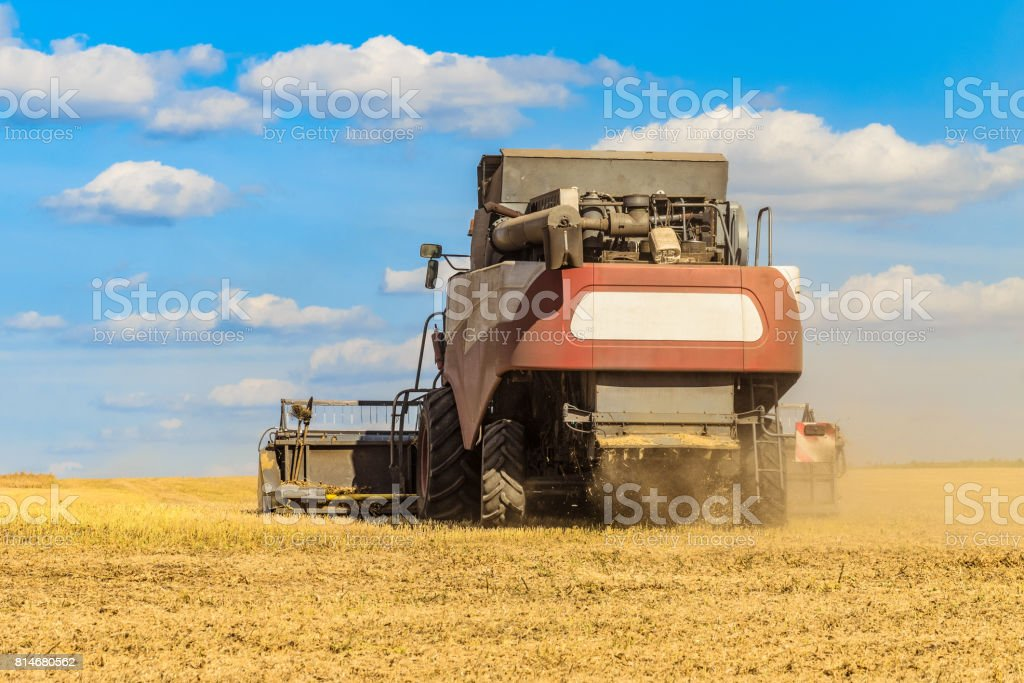 Combine harvester in the field for harvesting. Agricultural machinery, rear view. stock photo