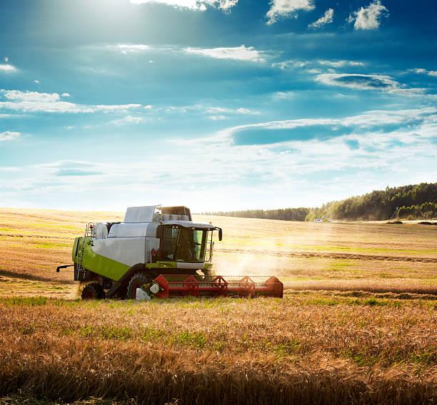 Mähdrescher in Wheat Field – Foto