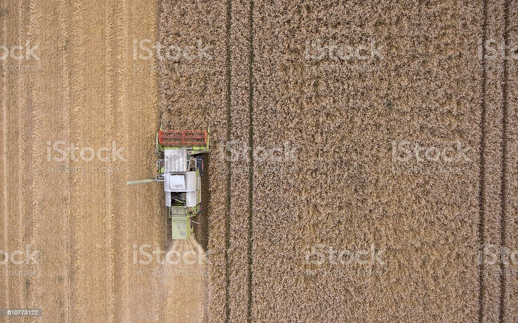 combine harvester on field stock photo