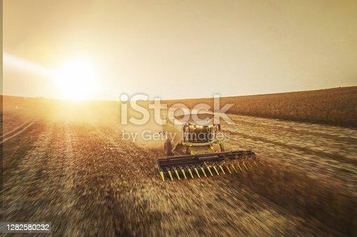 combine harvesting corn field at sunset.