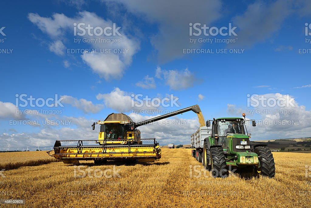 Combine Harvester unloads Grain into Tractor Trailer stock photo