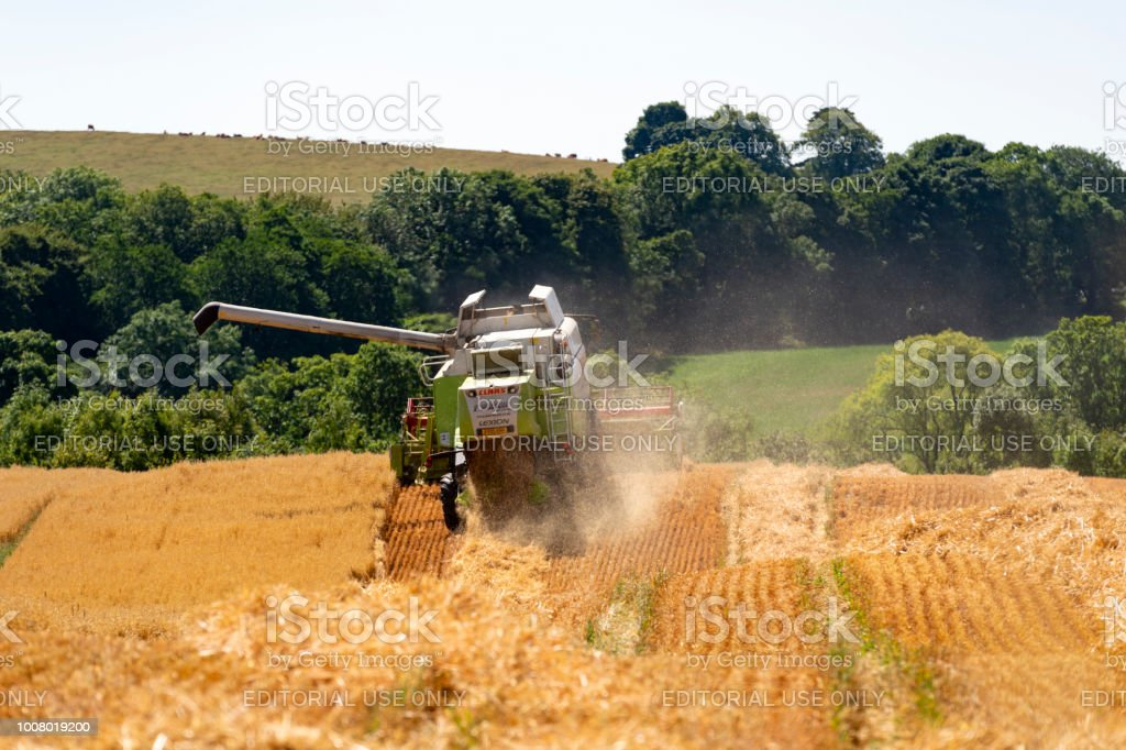 Combine Harvester Working In A Field Stock Photo - Download Image Now