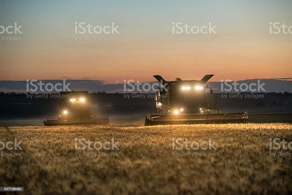 Combine harvester working on a wheat crop at night - foto de stock