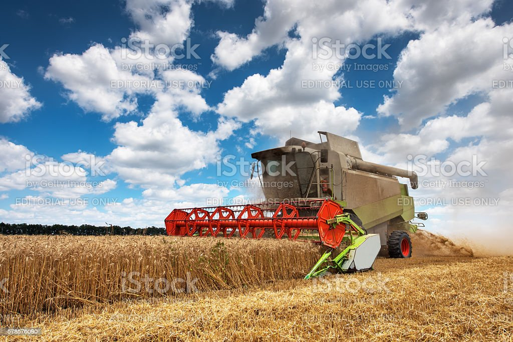 combine harvester working on a wheat field. stock photo