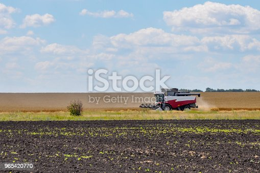 Combine machine is harvesting on farm field in sunny day with clouds