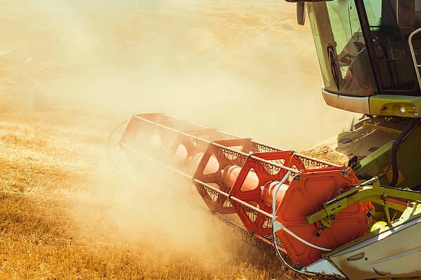 combine harvester working stock photo