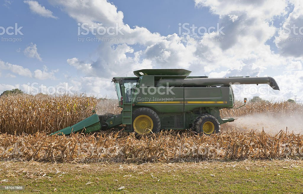 Combine Harvesting a Corn Field stock photo