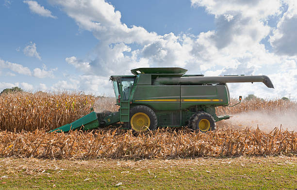 Combine Harvesting a Corn Field stock photo