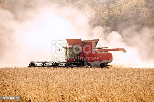 Combine harvesting a soybean crop on a bright sunny day.
