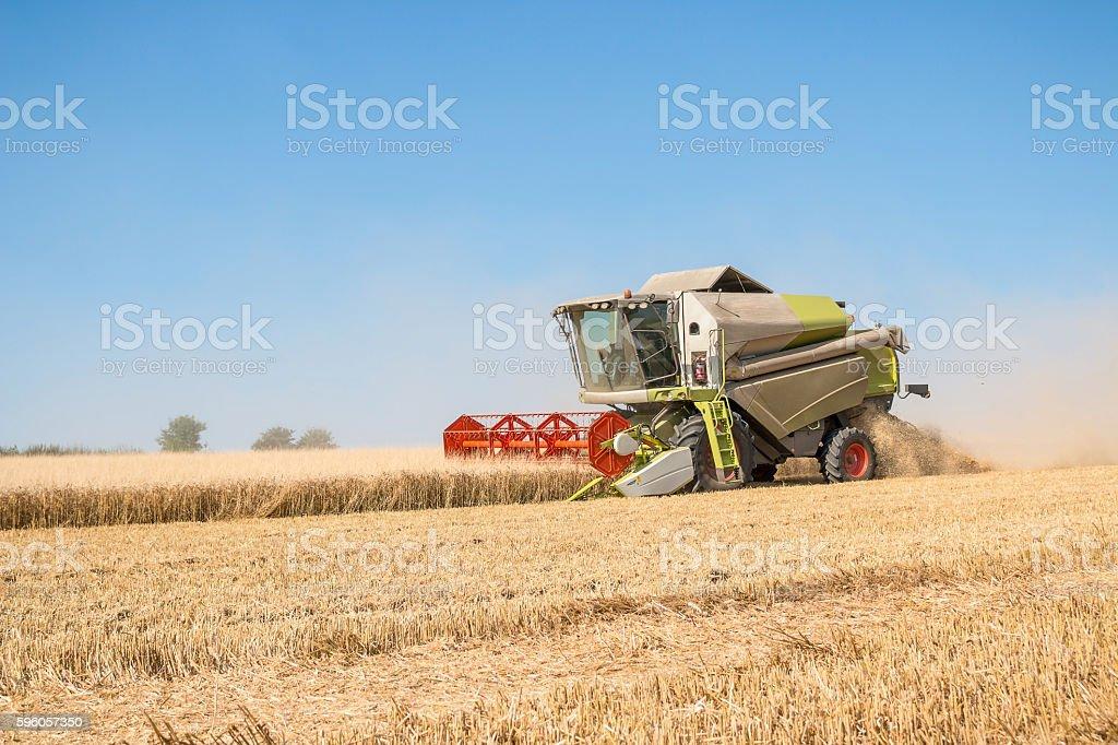 Combine harvesting grain royalty-free stock photo