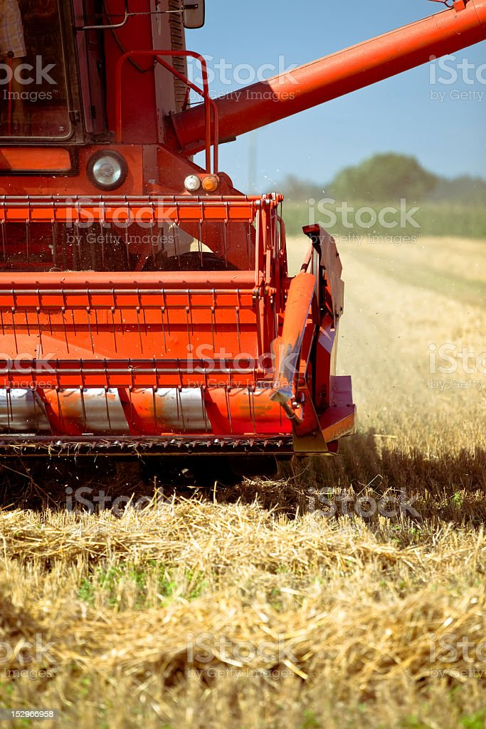 Combine harvesting wheat royalty-free stock photo