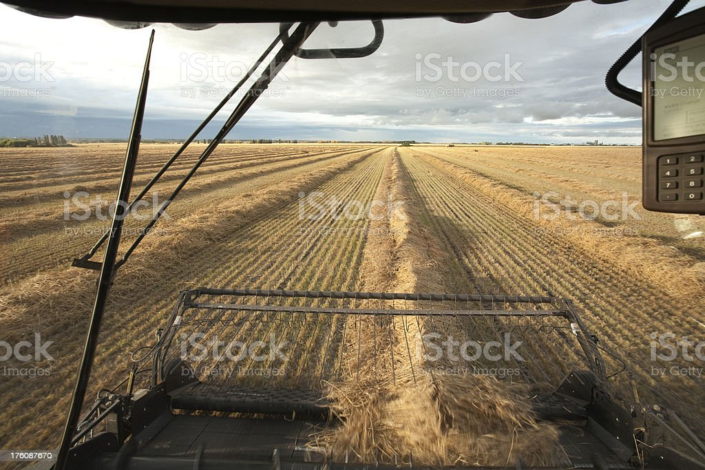 Combine View royalty-free stock photo