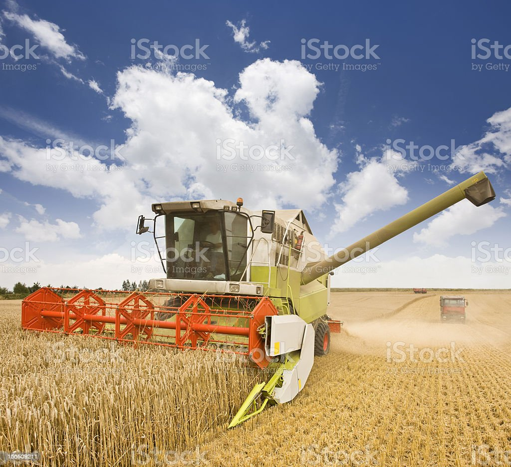 Combine working on a wheat field royalty-free stock photo