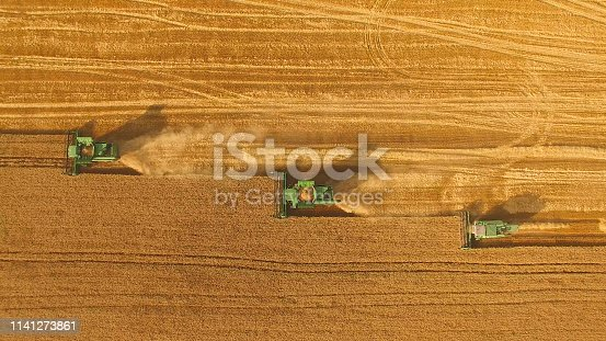 Combines in the field. Aerial view of harvesters. Season of gathering crops. Rye and barley.